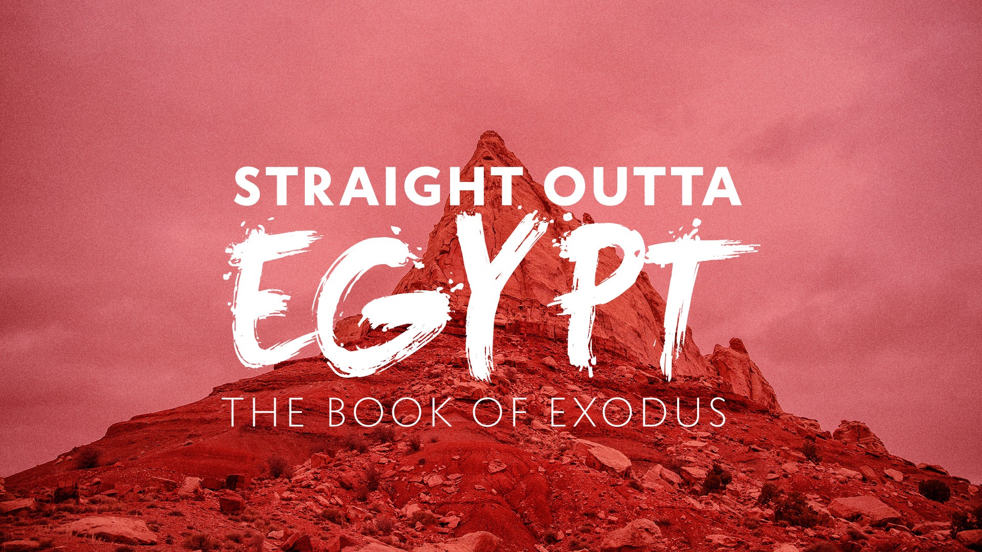 Straight Outta Egypt: Studies In Exodus